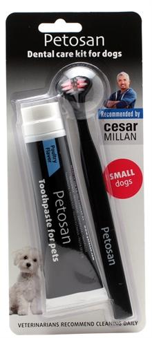 Petosan tandborste och tandkräm för hund 1c1fb98345f07
